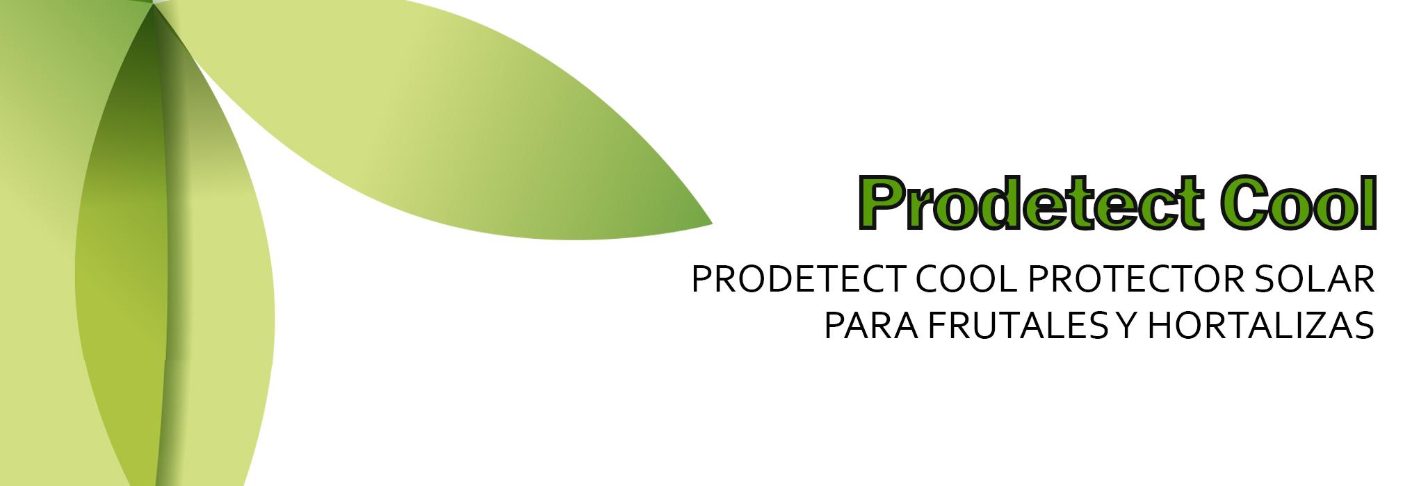 Prodetect Cool long