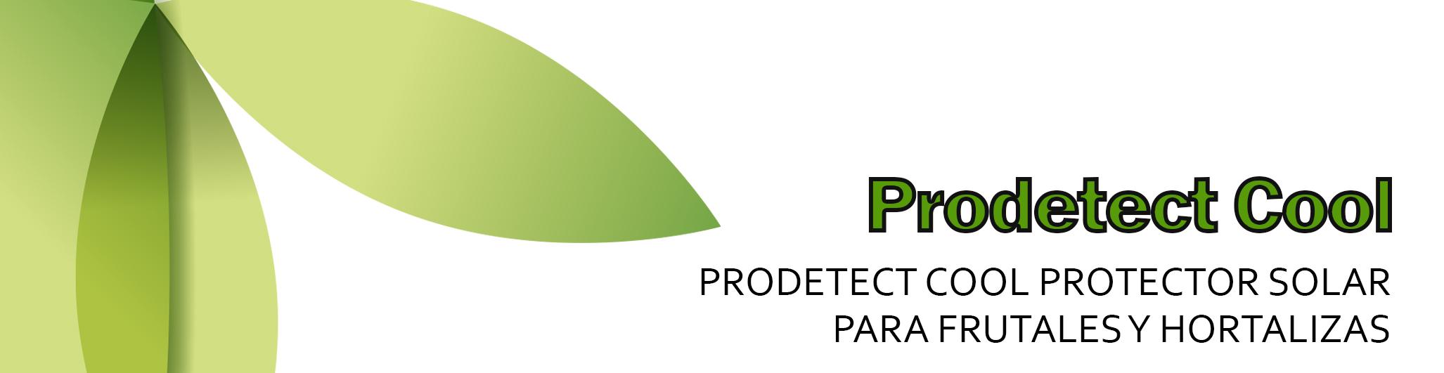 Prodetect Cool